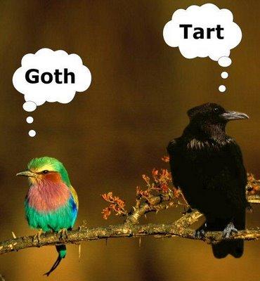 Goth_tart_birds