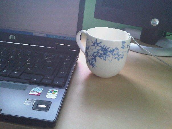 Mug home